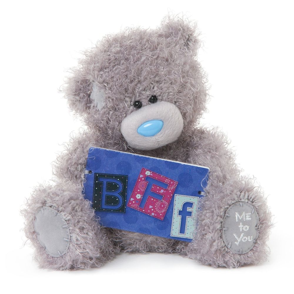 Me To You Bear With BFF Plaque
